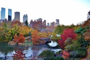 como-viajar-NY-fall